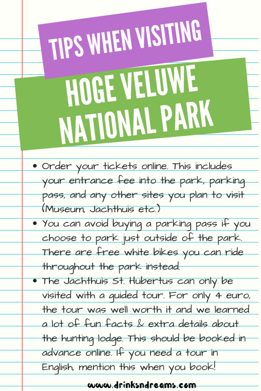 tips-for-hoge-veluwe-national-park